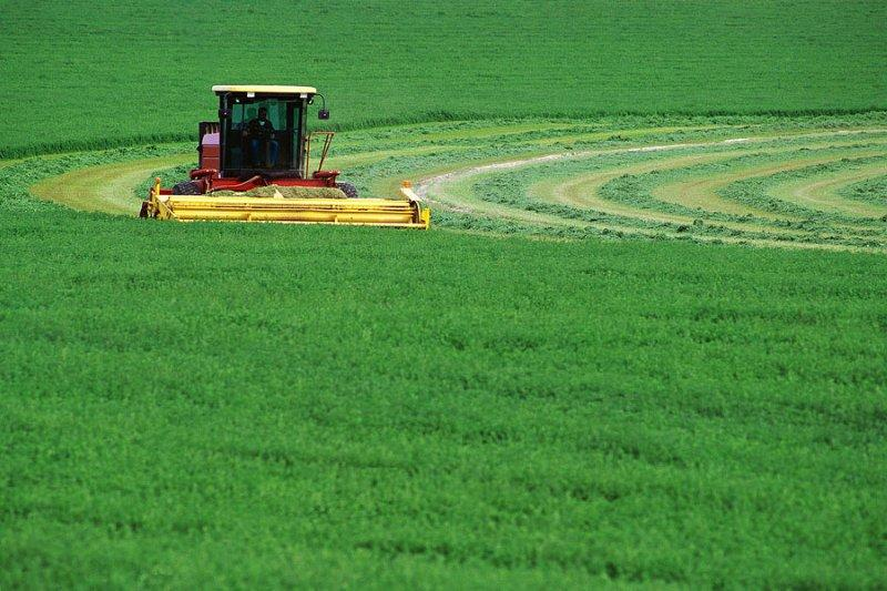 Farm Image2.jpg